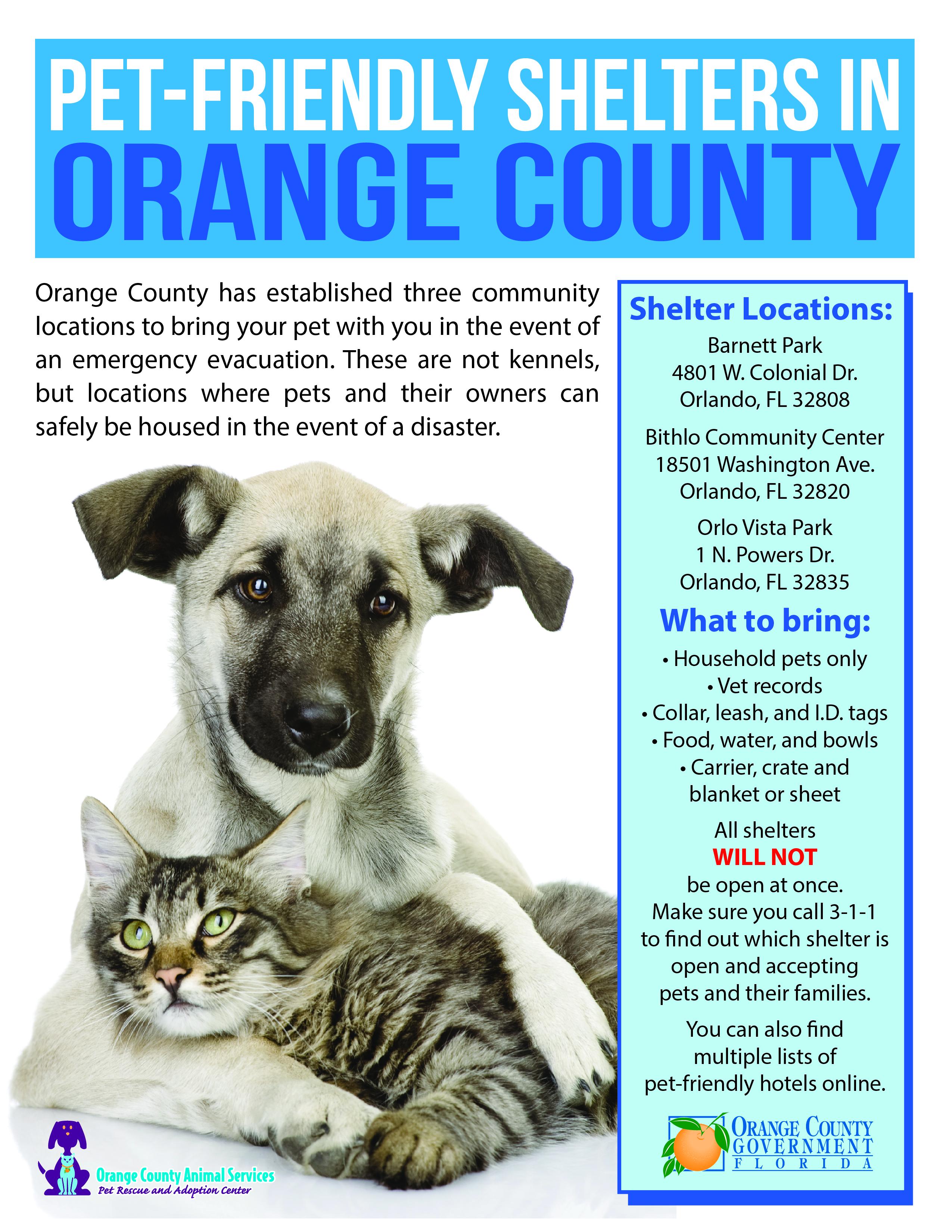 Big Cat Rescue Photos U0026 Facts Manual Guide